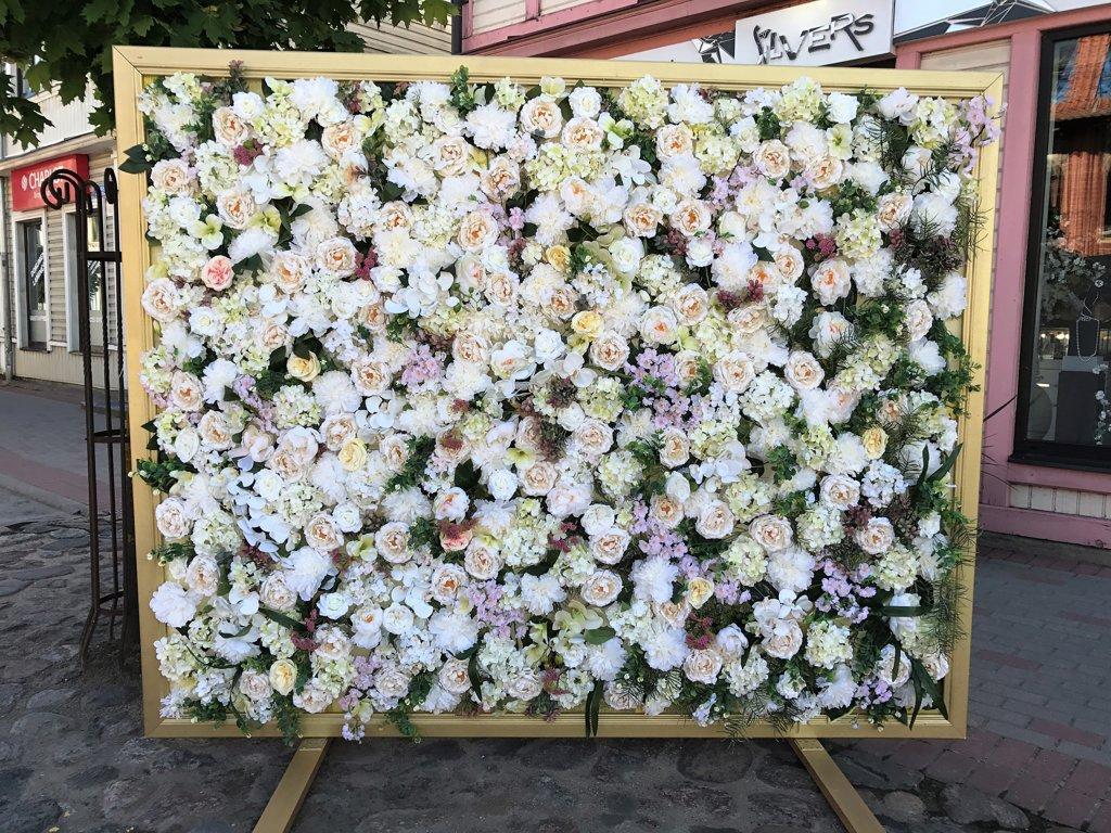 Ziedu sienas noma